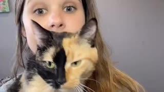 Cat patience test