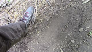Question and Answer Interview, Why no more Sasquatch Footprints