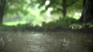 Raindrops (Free to Use HD Stock Video Footage)