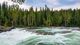 Relax Library: Video 44.River stream slowly running. Relaxing videos and sounds