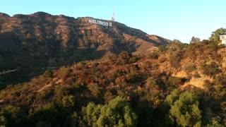 hollywood ............