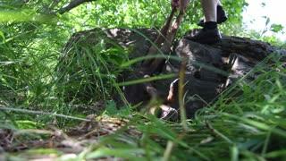 Baby Moose Stuck in a Boulder