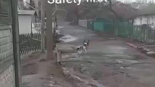 Safety First!!