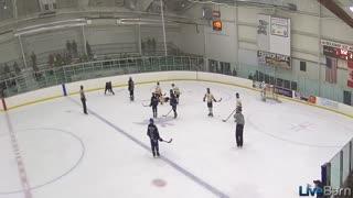 Hockey cheap shots