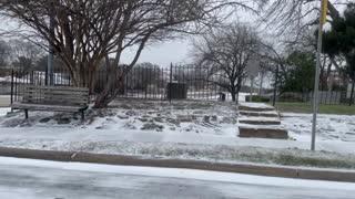 Snowy Dallas!