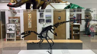 On the Dinosaur Trail: Rudyard Depot Museum, Montana
