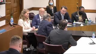 Tony Burris' Testimony During Georgia Senate Hearing on Election Fraud