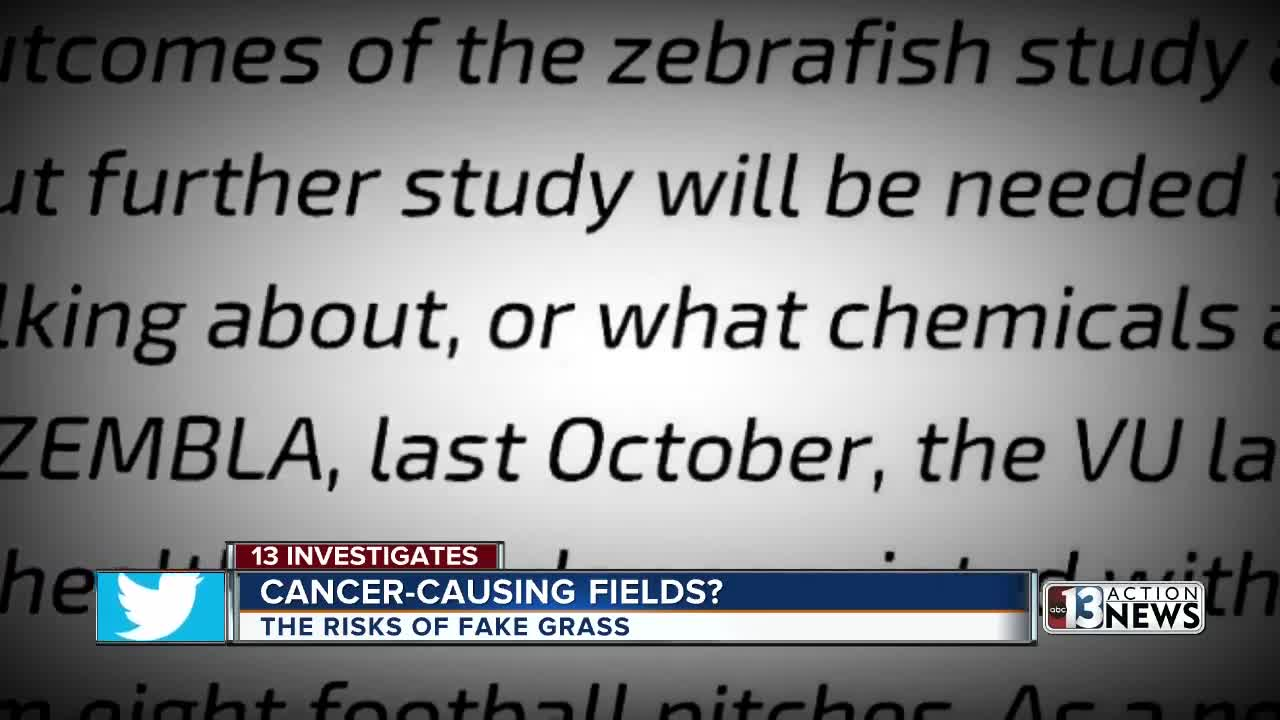 13 Investigates: Is there a real risk in artificial turf fields?