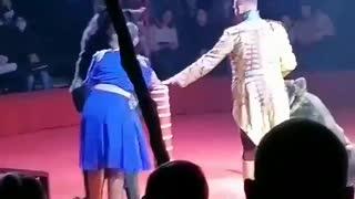 Oso de un circo atacó a una de sus adiestradoras