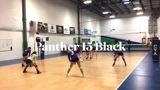 Panther VBC 15 Black Celebration