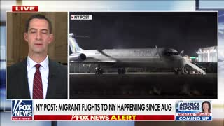 Tom Cotton: Biden admin trying to hide consequences of disastrous open border policies