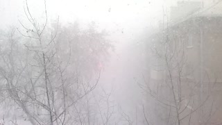 Blizzard in the city