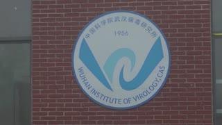 WHO team visits virology institute in Wuhan