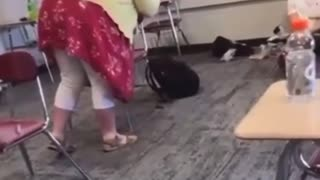 Teacher Harasses VACCINATED Student For Not Wearing A Mask