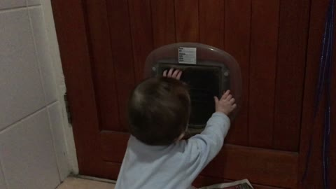 Baby and cat play beautifully