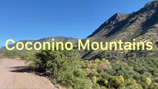 Coconino Mountains