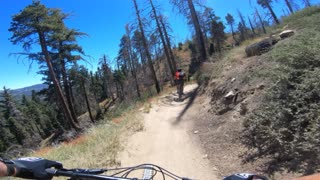 Mountain Biking Snow Summit Going Green July 2020