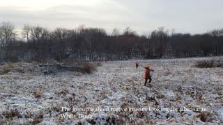 Iowa Outdoor Adventures - What Cheer, Iowa Upland Bird Hunting