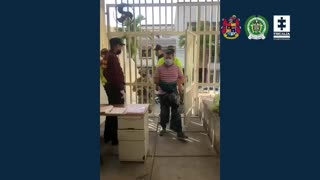 Policía activo sería el líder de una banda dedicada al hurto en Bucaramanga