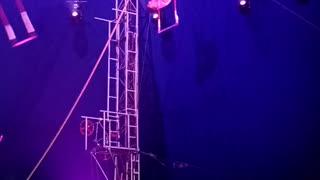 Guy walks upside down
