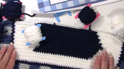 Intarsia Crochet Techniques in a Tapestry Project