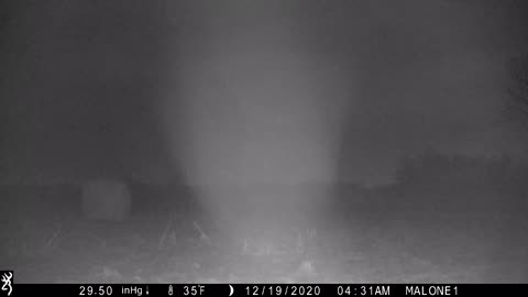 Ungrateful deer thinks my trail cam smells like toe jam