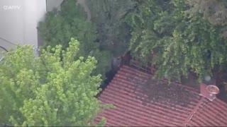 Stolen SUV Suspect Taken Into Custody After LA High Speed Chase