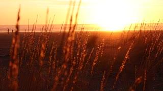 Sunset Relaxing Video