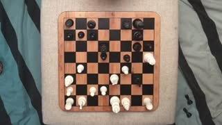 Chess routine