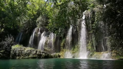 A few waterfalls with trees around it