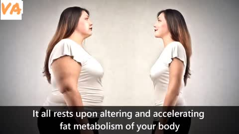 How to loss belly fat fast