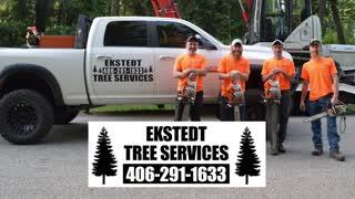 Ekstedt Tree Services