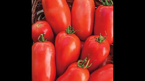 D&R Fruit Market tomatoes