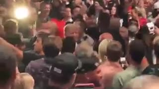 President Donald Trump at the UFC fight