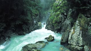 A river flows through a forest with a breathtaking sound
