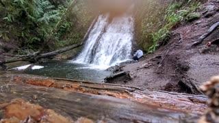 Dickerson falls