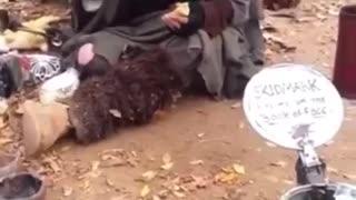Homeless guy explains the world