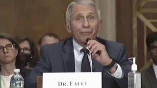 "Dr. Fauci ""If anybody is lying here, Senator, it is you!"""