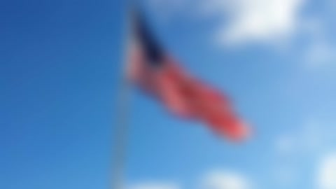 Symbol of Freedom!