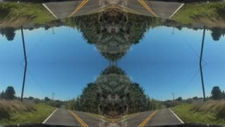 Driving through the country with mirror effect