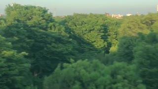 JAPAN TONERI PARK