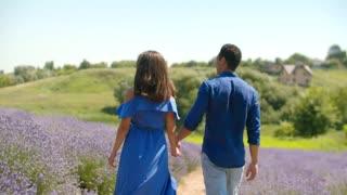 Lovers walking through a lavender field