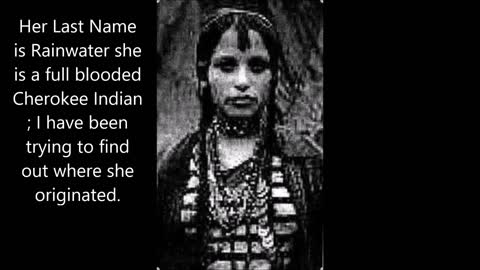 The Origins of the Cherokee Indian