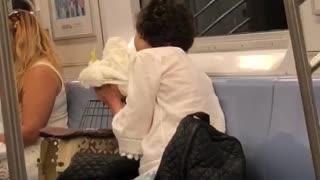 Woman kisses white bird on train