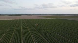 DJI Mavic Mini flight over fields during 2020 quarantine