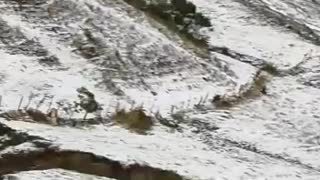 Video: Fuerte granizada se registró este jueves en Santander 2