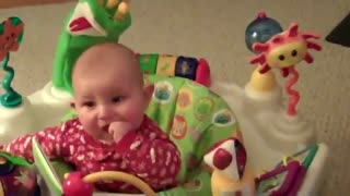 Baby like Siberian Husky Dogs: Compilation