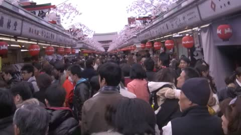 WHAT TO DO IN TOKYO, ASAKUSA with kids