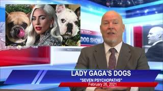 Bulldog Reports for February 26, 2021