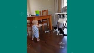 cat makes baby happy